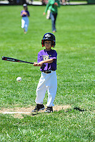 PNLL T-Ball Bats Action 2015. (Photo by AGP Photography)