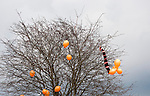 Wealdstone 0 Newport County 0, 17/03/2012. St Georges Stadium, FA Trophy Semi Final. Orange balloons and a scarf stuck in a tree at the away end at St Georges Stadium, home ground of Wealdstone FC, before the club played host to Newport County in the semi-final second leg of the F.A. Trophy. The game ended in a goalless draw, watched by a capacity crowd of 2,092 which meant the visitors from Wales progressed by three goals to one to the competition's final at Wembley, where they would meet York City. The F.A. Trophy was the premier cup competition for non-League clubs in England and Wales affiliated to the Football Association. Photo by Colin McPherson.