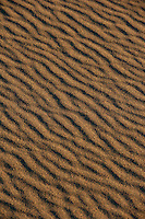 Striations in the sand, Death Valley.