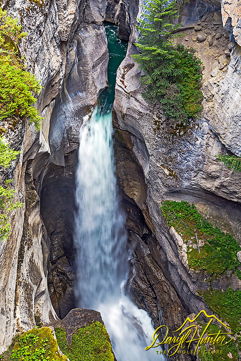 One of the many waterfalls of Maligne Slot Canyon in Jasper National Park