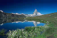 Matterhorn reflecting in Stellisee, Zermatt, Swiss Alps, Switzerland
