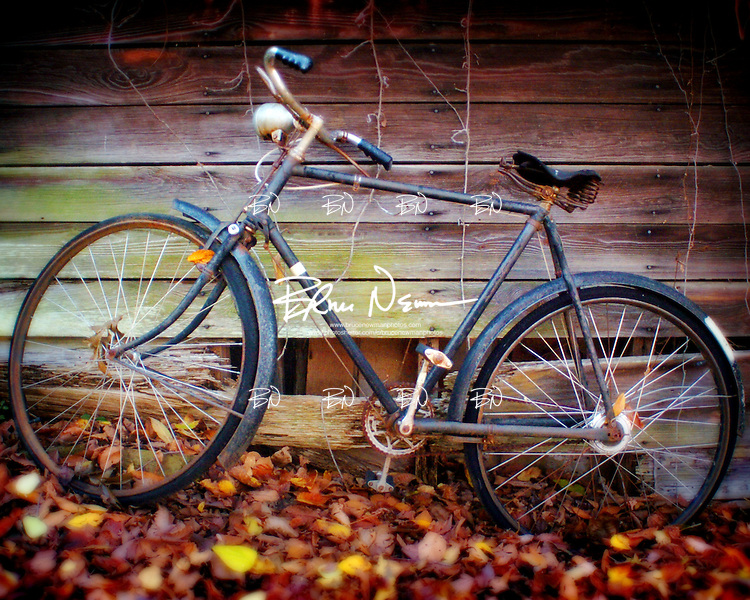 Bike in Oxford, Miss.