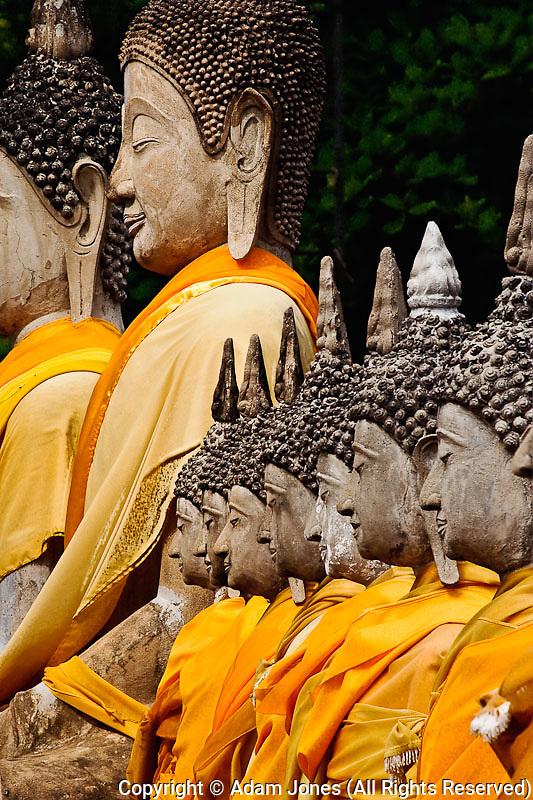 Row of Buddha statues, Wat Yai Chaya Mongkol or The Great Temple of Auspicious Victory, Ayutthaya, Thailand