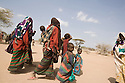 Kenya - Dadaab - Somali refugees who have just arrived walk to Dagahaley registration center in order to get their cooking tools and their first food rations.