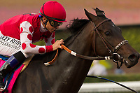 ARCADIA, CA  JANUARY 07: #8 Midnight Bisou, ridden by Mike Smith, wins the Santa Ynez Stakes (Grade ll) on January 7, 2018, at Santa Anita Park in Arcadia, CA. (Photo by Casey Phillips/ Eclipse Sportswire/ Getty Images)
