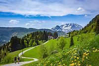 Austria, Salzburger Land, Tennengau, hikers above Russbach am Pass Gschuett with Tennen Mountains at background | Oesterreich, Salzburger Land, Tennengau, Wanderer oberhalb von Russbach am Pass Gschuett, im Hintergrund das Tennengebirge