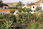 Historic village and church tower Iglesia de Santa Maria, Betancuria, Fuerteventura, Canary Islands, Spain