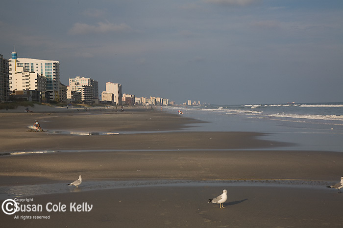 Beach scene, Atlantic Beach, SC