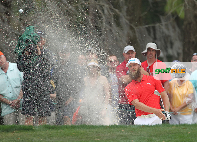Graham DeLaet (CAN) , duringThe Final Round  of the Valspar Championship, at the  Innisbrook Resort, Palm Harbor,  Florida, USA. 13/03/2016.<br /> Picture: Golffile | Mark Davison<br /> <br /> <br /> All photo usage must carry mandatory copyright credit (&copy; Golffile | Mark Davison)