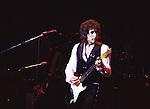 Bob Dylan 1982.© Chris Walter.