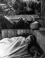 The African Queen (1951) <br /> Humphrey Bogart &amp; Katharine Hepburn<br /> *Filmstill - Editorial Use Only*<br /> CAP/KFS<br /> Image supplied by Capital Pictures