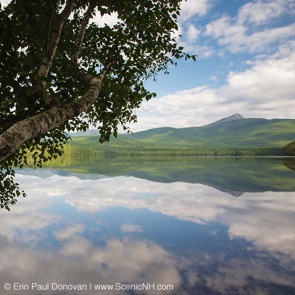 This photo represents July in the 2018 White Mountains New Hampshire calendar. Mount Chocorua from Chocorua Lake in Tamworth, New Hampshire during the summer months. You can purchase a copy of the calendar here: http://bit.ly/2rND4Kf
