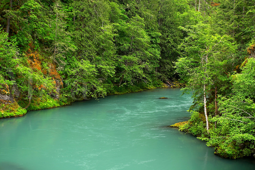Elwha River, Olympic National Park, Olympic Peninsula, Clallam County, Washington, USA