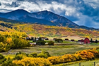 12,965 foot high Mt. Sopris rises above the spectacular fall  foliage near Carbondale, Colorado.
