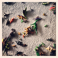 Dinosaurs lay strewn about the floor of my nephew's bedroom, February 2, 2013.