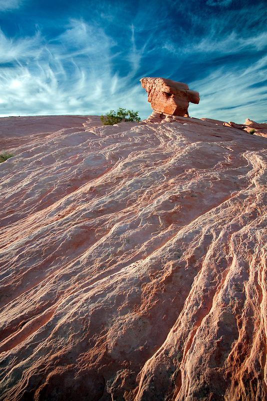 Lone rock. Valley of Fire State Park, Nevada