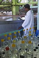 France/DOM/Martinique/ Le François: Distillerie du Simon- les échantillons du laboratoire d'oenologie et les cuves à fermentation en fond