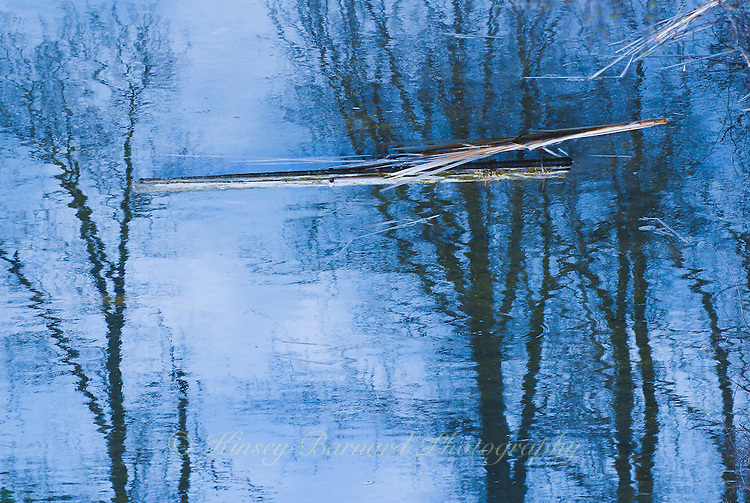 """MOODY BLUE""<br />