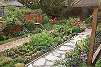 Ornamental edible garden mixed bed of herbs, vegetables, and flowers between paths in Rosalind Creasy front yard garden