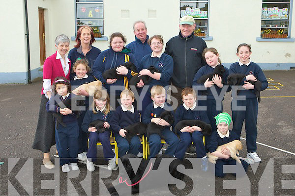 Pupils from Knocknagoshel NS with the eleven puppies from one guide dog at the Kerry Guide dogs launch at their school Friday morning front row l-r: Sarah Jane Walsh, Jame Twomey, Conor Lane, Sean Collins, David Cahill, Sarah Cusack. Back row: Margaret Curtin Principal, Lucia Collins, Breda Clancy Fundraising manager, Marie Moynihan, Michael Edmonds Breeding co-ordinator, Emma Mai Peacock, John Curtis Breeder, Sarah Delaney and Katie Galvin