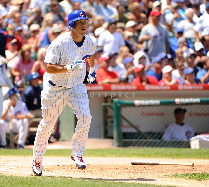 TYLER COLVIN, of the Chicago Cubs, in action  during the Cubs game against the St. Louis Cardinals on July 23, 2010 at Wrigley Field in Chicago, IL...Cubs won 5-0..