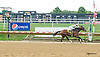 Pea Shooter Pro winning at Delaware Park on 9/21/15
