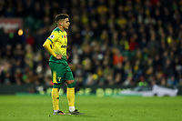 8th November 2019; Carrow Road, Norwich, Norfolk, England, English Premier League Football, Norwich versus Watford; A dejected Max Aaron of Norwich City - Strictly Editorial Use Only. No use with unauthorized audio, video, data, fixture lists, club/league logos or 'live' services. Online in-match use limited to 120 images, no video emulation. No use in betting, games or single club/league/player publications