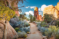 The Devils Garden trail is the longest of the maintained trails in the park, the Devils Garden Trail leads to eight awe-inspiring arches. Expect narrow ledges with rocky surface hiking and scrambling on slickrock.