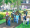 Money Multiplier, Dunkin' with Dale, Syntax and My Team in the paddock before The Kent Stakes (gr 3) at Delaware Park on 7/18/15