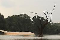 Rio Capim formado pelos rios Ararandeua e Surubiju.<br /> Paragominas, Pará, Brasil.<br /> Foto Paulo Santos<br /> 11/2008