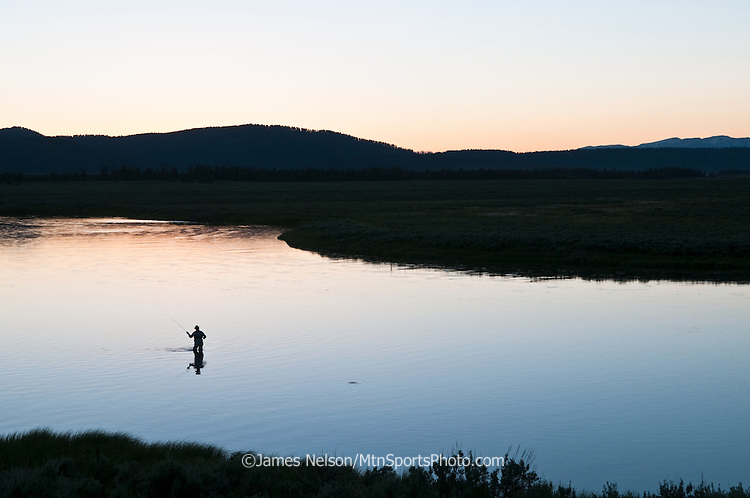 An angler casts a fly to a rising trout on the Henry's Fork (a.k.a., North Fork) of the Snake River near Island Park, Idaho.