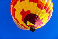 Albuquerque Convention & Visitors Bureau balloon at the Albuquerque International Balloon Fiesta, Albuquerque, New Mexico USA.
