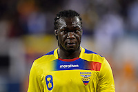 Ecuador forward Felipe Caicedo (8). Argentina and Ecuador played to a 0-0 tie during an international friendly at MetLife Stadium in East Rutherford, NJ, on November 15, 2013.