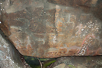 Hawaiian Petroglyphs, Nuuanu, Honolulu, Oahu, Hawaii