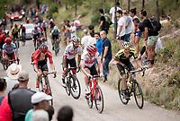 up the steepest part of the brutal Mas de la Costa: the final climb towards the finish<br /> <br /> Stage 7: Onda to Mas de la Costa (183km)<br /> La Vuelta 2019<br /> <br /> ©kramon