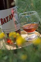 """Europe/France/Auvergne/43/Haute-Loire/Yssingeaux: Apéritif local """"Le Batavia"""" à base de gentiane de la distillerie Yssingeaise créée en 1883 -"""