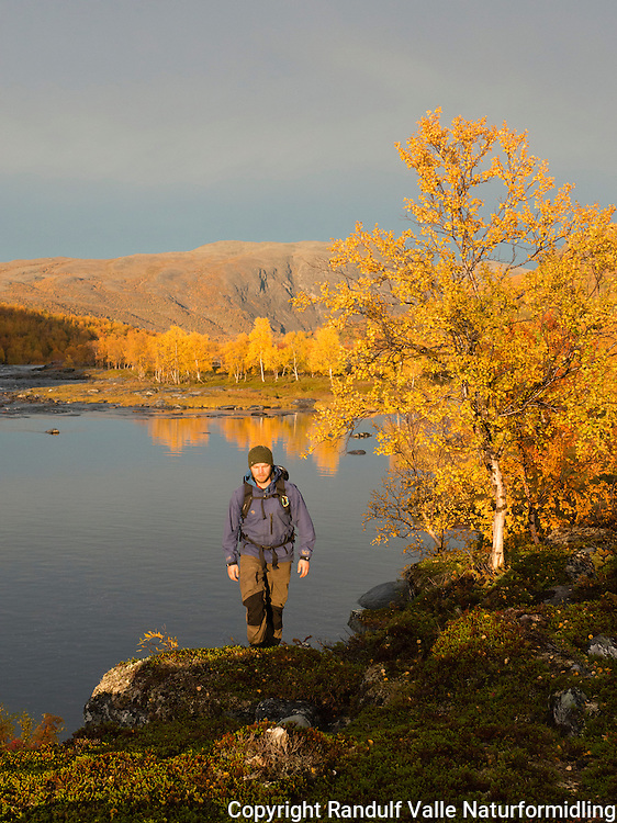 Høstfarger ved Stabburselva i Finnmark. ---- Fall colours by Stabburselva.