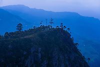 Haputale, view of mountains in the Sri Lanka Hill Country landscape at sunrise, Nuwara Eliya District, Sri Lanka, Asia. This is a photo of the view from Haputale over mountains in the Sri Lanka Hill Country landscape at sunrise, Nuwara Eliya District, Sri Lanka, Asia.