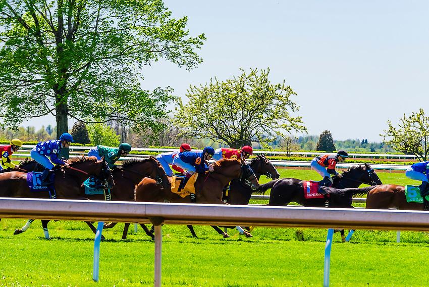 Horse racing on the turf course at Keeneland Racecourse, Lexington, Kentucky USA.