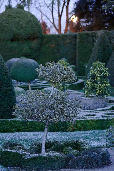 GARDEN - Abbey House Garden, Malmesbury ( 8th January 2010 )