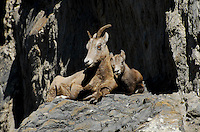 """KEEP ME CLOSE""<br />