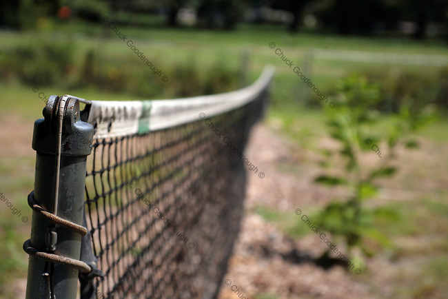 Stock Photo of an Abandoned tennis court post and net close-up