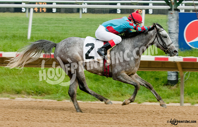 Delishess winning at Delaware Park on 5/27/13.