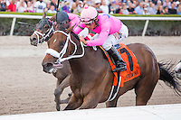 HALLANDALE BEACH, FL - MARCH 04: #7 Miss Sky Warrior with Paco Lopez up winds the Davona Dale (G2) Stakes at Gulfstream Park. (Photo by Arron Haggart/Eclipse Sportswire/Getty Images)