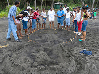 community members and local children build leatherback sea turtle sand sculpture on beach helping to bring awareness, Dominica, West Indies, Caribbean, Atlantic