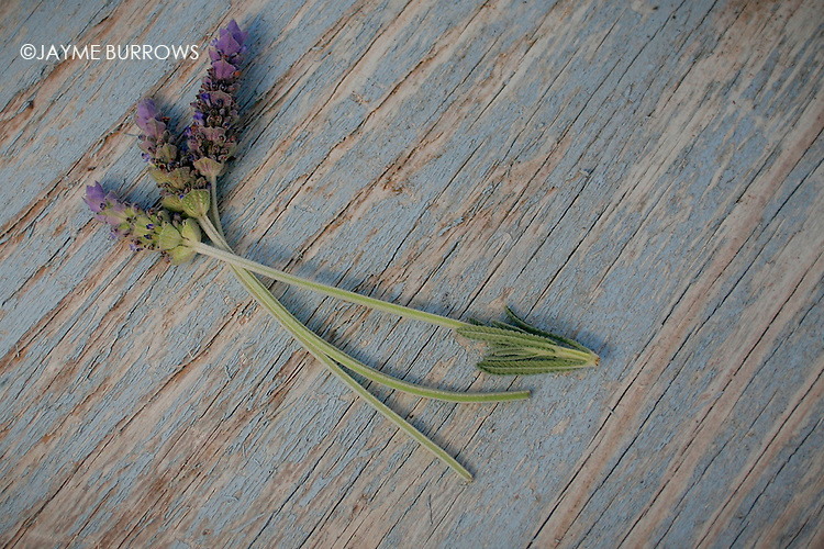 Lavender heads on a weathered board.