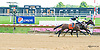 Don Ave winning at Delaware Park on 7/29/15