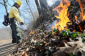 Cave Springs controlled burn