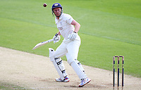 PICTURE BY VAUGHN RIDLEY/SWPIX.COM - Cricket - County Championship, Div 2 - Yorkshire v Northamptonshire, Day 2  - Headingley, Leeds, England - 31/05/12 - Yorkshire's Andrew Gale hits out.