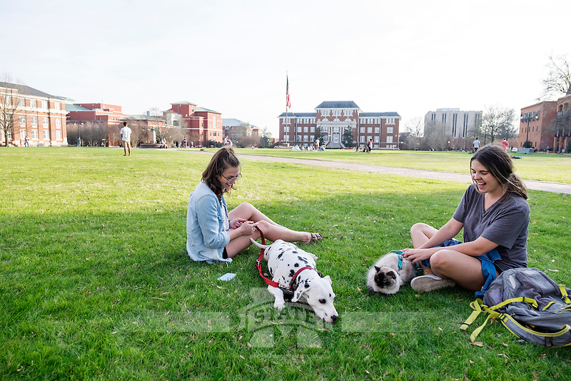 Drill Field Spring Day, with students taking their cat and dalmation pets out to enjoy the weather.<br />  (photo by Megan Bean / &copy; Mississippi State University)